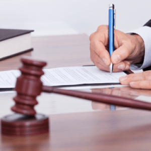 Litigation legal services